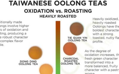 Oolong Tea Infographic F
