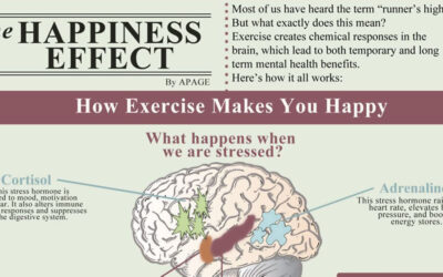 The Happiness Effect Infographic F