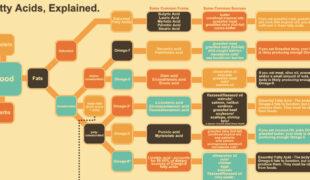 Fatty Acids Infographic F