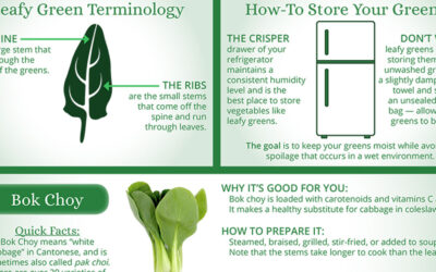 Guide To Leafy Greens Infographic F