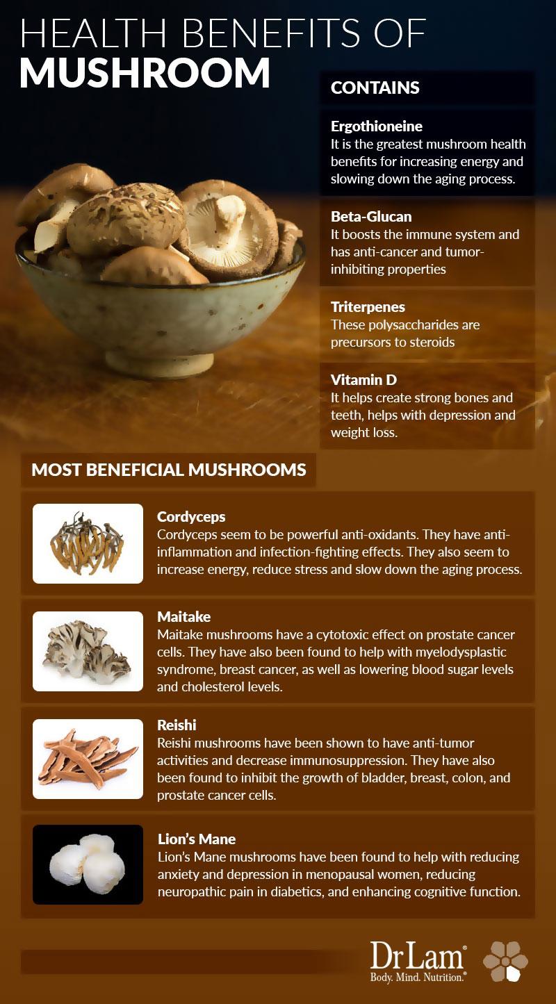 Health Benefits Of Mushrooms Infographic